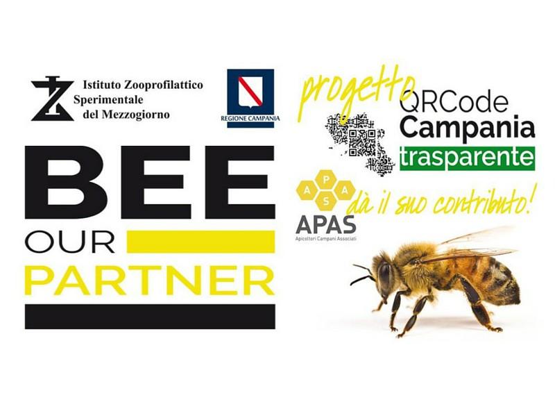 QRcode, apicoltura campania, miele campania, arnie, polline, miele, miele italiano, apicoltura zeffiro, propoli, pappa reale, polline, nocciomiele